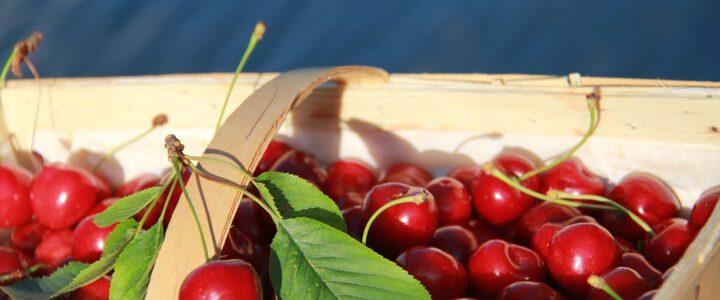 Redenen om een fruitmand te bestellen